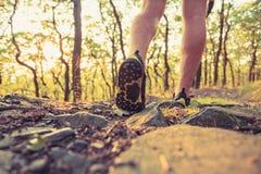Jambes de marche ou fonctionnantes dans la forêt, l'aventure et l'exercice Photo stock