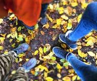 Jambes des adolescents Image stock