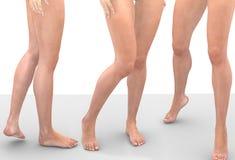 Jambes des femmes image stock