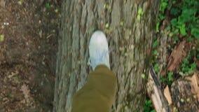Jambes du ` s de femme marchant sur l'identifiez-vous en bois le point de vue de forêt banque de vidéos