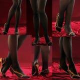 Jambes féminines. Images libres de droits