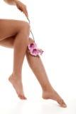 Jambes femelles avec l'orchidée rose Image libre de droits