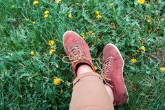 Jambes femelles dans des espadrilles sur l'herbe avec des pissenlits Images libres de droits