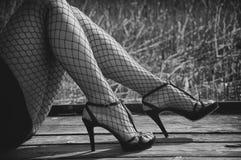 Jambes femelles dans les bas nets Images libres de droits