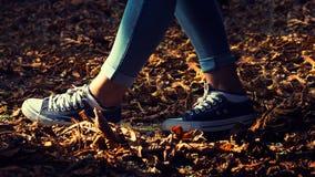 Jambes femelles dans les jeans et des espadrilles bleues Photos stock
