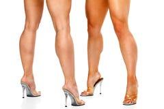 Jambes femelles musculaires bronzées d'isolement sur le blanc Image stock