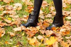 Jambes femelles se tenant sur des feuilles d'herbe verte et d'érable d'automne Photo stock
