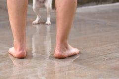 Jambes humaines et jambes troubles de chien Photos libres de droits