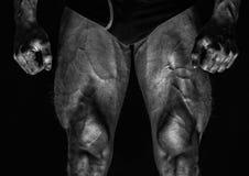 Jambes masculines photographie stock libre de droits