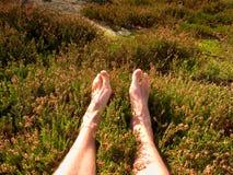 Jambes masculines sur le buisson sec de bruyère Jambes fatiguées sur le paysage maximal rocheux de bove Peau rose pure, clous cla Photos libres de droits