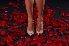 Jambes minces du ` s de femmes dans des talons hauts se tenant sur les pétales d'une rose photographie stock libre de droits