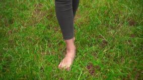 Jambes nues femelles sur l'herbe Marchant nu-pieds sur l'herbe, le concept de la liberté et le bonheur banque de vidéos
