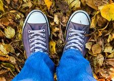 Jambes sur les feuilles automnales Photo stock