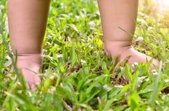 Jambes un petit enfant sur la pelouse d'herbe Image stock