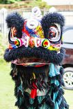 Jambi, Indonesia - January 28, 2017: Lion dance doing acrobatics to celebrate Chinese New Year. Jambi, Indonesia - January 28, 2017: Group of lion dance royalty free stock photography