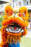 Jambi Indonesien - Januari 28, 2017: Lejondans som gör akrobatik för att fira kinesiskt nytt år royaltyfri bild