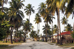 Jambiani by i Zanzibar Arkivbilder