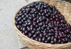 Jamun Berry. Jambolan plum or jambhul or jamun fruit, Java plum Syzygium cumini royalty free stock photography