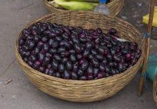Jamun Berry. Jambolan plum or jambhul or jamun fruit, Java plum Syzygium cumini royalty free stock photos