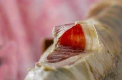 Jambon espagnol ibérien, jambon de bellota Photographie stock libre de droits