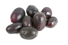Jambul or Jamun (Syzygium cumini) Royalty Free Stock Photos