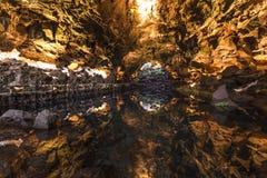 Jameos del Água, Lanzarote, canário Fotografia de Stock