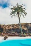 Jameos Del Agua basen w powulkanicznej jamie, Lanzarote Fotografia Royalty Free