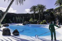 Jameos del Agua, Lanzarote Stock Image