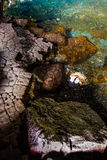 Jameos del Agua. Photography of access to the lake with rare blind white crabs in Jameos del Agua cave, Lanzarote, Canary Island, Spain royalty free stock photos