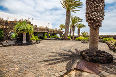 Jameos del Agua. Photography of garden above the Jameos del Agua cave, Lanzarote, Canary Island, Spain stock image