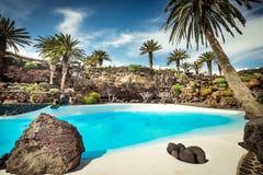 Jameos del Agua pool, Lanzarote. Outer Jameos del Agua pool, Lanzarote, Canary Islands, Spain royalty free stock photography