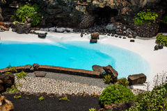 Jameos del Agua pool. Photography of a pool in Jameos del Agua cave, Lanzarote, Canary Island, Spain royalty free stock images