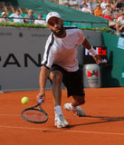 James Blake, Tennis  2012. 2012 World Team Cup. This photo shows US player James Blake during his singles match with Radek Stepanek. This tennis event which is Stock Photography