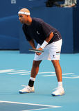 James Blake (USA), professional tennis player Stock Images