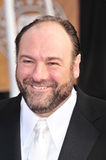 James Gandolfini Fotografia de Stock