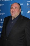 James Gandolfini Lizenzfreie Stockbilder