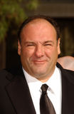 James Gandolfini Fotografia de Stock Royalty Free
