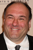 James Gandolfini Fotografia Stock