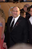 James Gandolfini Royalty Free Stock Images