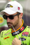 James Hinchcliffe Royaltyfria Foton