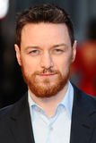 James Mcavoy Fotografia Royalty Free