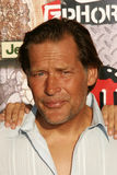 James Remar Royalty Free Stock Photography
