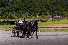 Free James River Driving Association Event In Staunton Va Royalty Free Stock Photo - 73716655