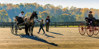 Free James River Driving Association Event In Staunton Va Royalty Free Stock Image - 73731256