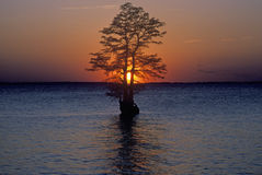 James River at Sunset, Jamestown, VA Stock Photography