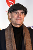 James Taylor Stock Images