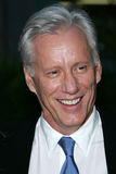 James Woods Royalty Free Stock Photo