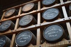 Jameson Distillery à Dublin image libre de droits