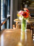 Jamesonii della gerbera in vaso di vetro Fotografia Stock Libera da Diritti