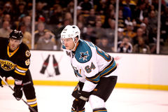 Jamie McGinn San Jose Sharks Stock Photography
